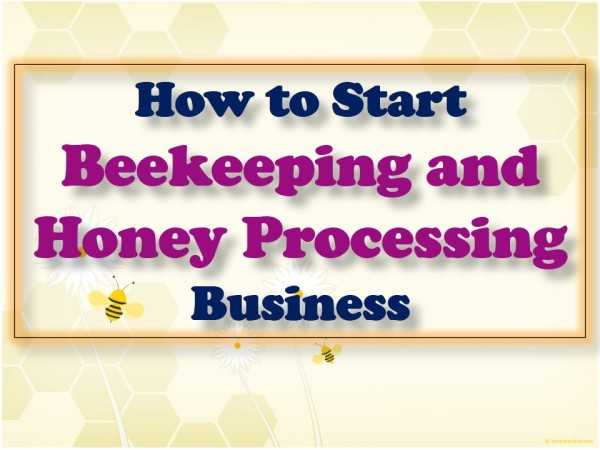a business plan for bee keeping Business of bees bee business blog bee business blog keep up to date with weekly posts from our beekeeping world, including tips for growing manuka trees, and starting a bee business do you want to plan and plant your forest yourself.