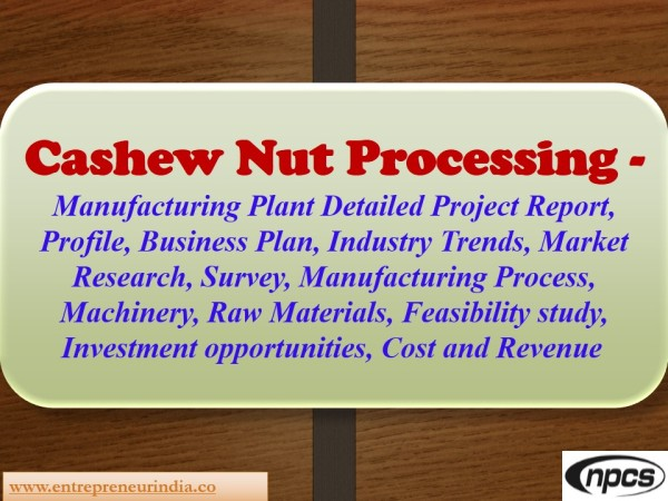 Nuts and Bolts of Business Plans
