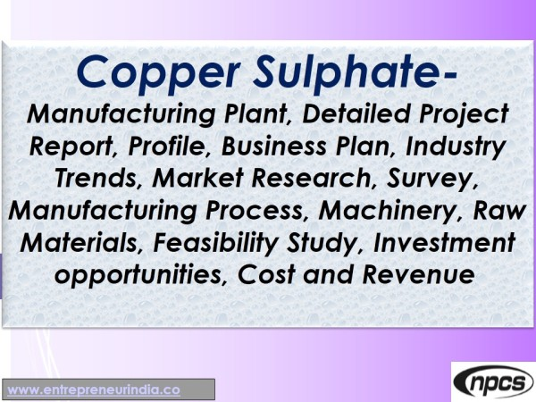 Copper Sulphate Manufacturing Plant Niir Project Consultancy Services