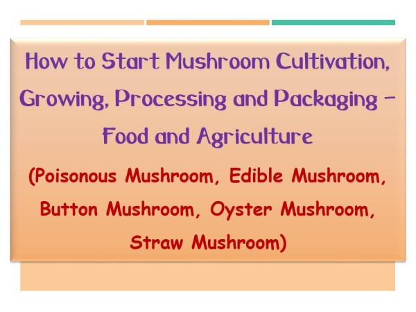 Mushroom Cultivation and Processing