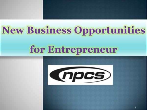 New Business Opportunities for Entrepreneur