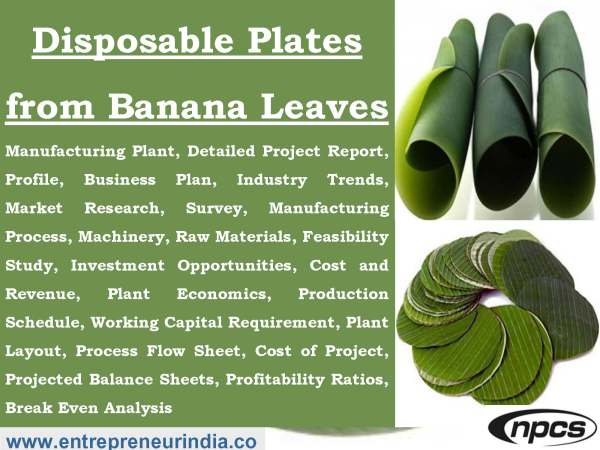 Disposable Plates from Banana Leaves
