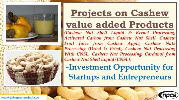Projects on Cashew value added Products.jpg