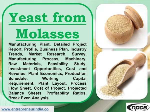 Yeast from Molasses.jpg