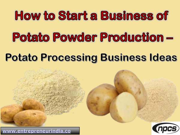 How to Start a Business of Potato Powder Production.jpg