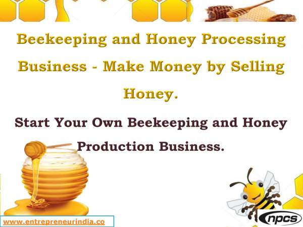 Beekeeping and Honey Processing Business - Make Money by Selling Honey._Page_01.jpg