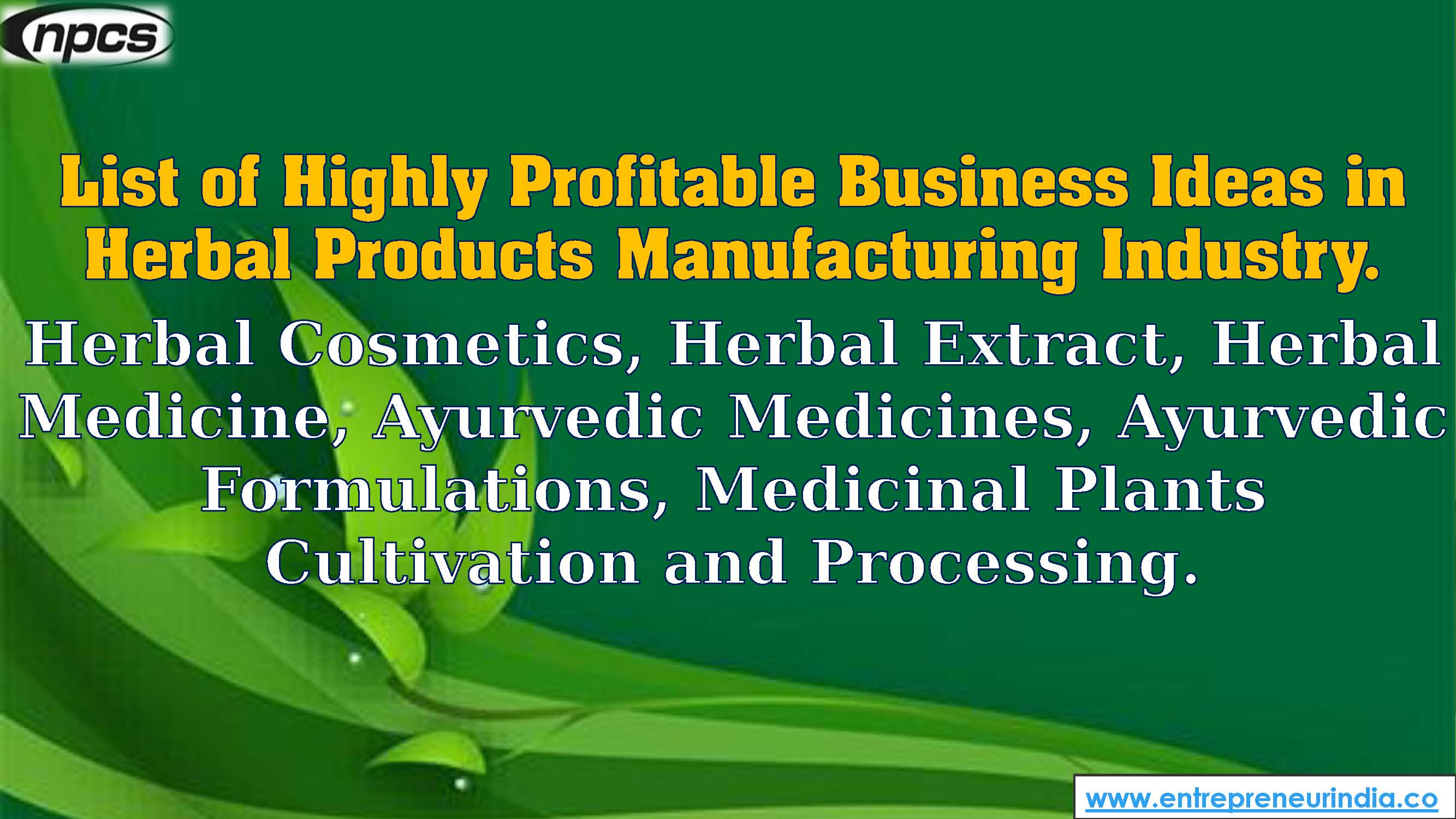 List of Highly Profitable Business Ideas in Herbal Products