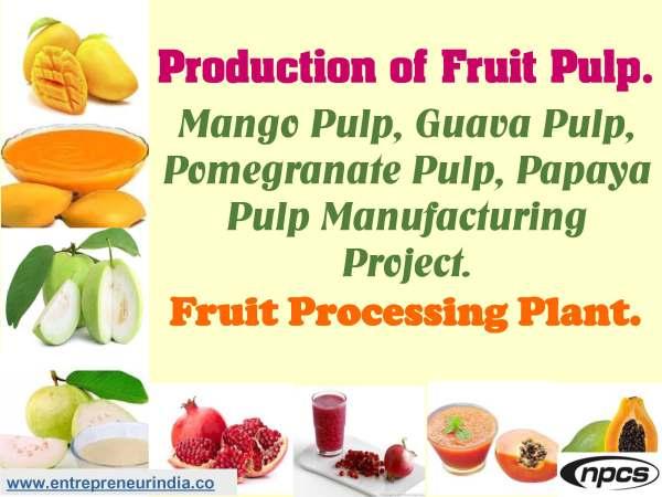 Production of Fruit Pulp. Mango Pulp, Guava Pulp, Pomegranate Pulp, Papaya Pulp Manufacturing Project._.jpg