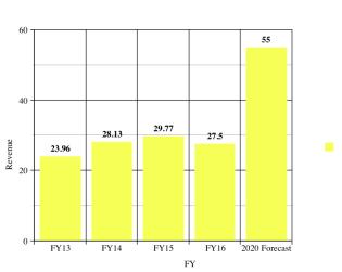 Indian Pharmaceuticals Revenue.png