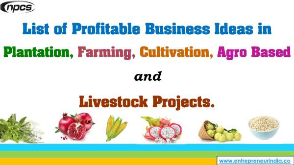 List of Profitable Business Ideas in Plantation, Farming, Cultivation, Agro Based and Livestock Projects..jpg