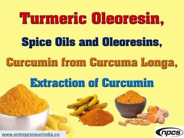 Turmeric Oleoresin, Spice Oils and Oleoresins.jpg