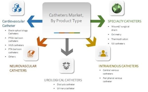 Global Catheter Market Segmentation, By Product Type.jpg