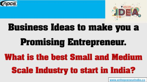 Business Ideas to make you a Promising Entrepreneur.jpg