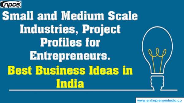 Small and Medium Scale Industries