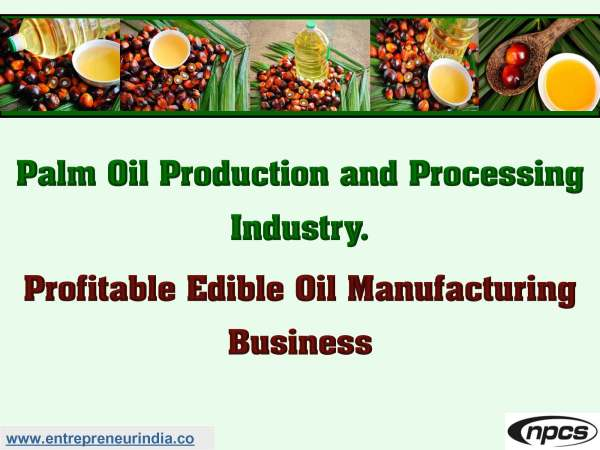 Palm Oil Production and Processing Industry.jpg