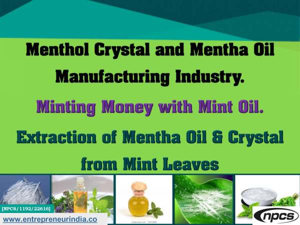 Menthol Crystal and Mentha Oil Manufacturing Industry.jpg